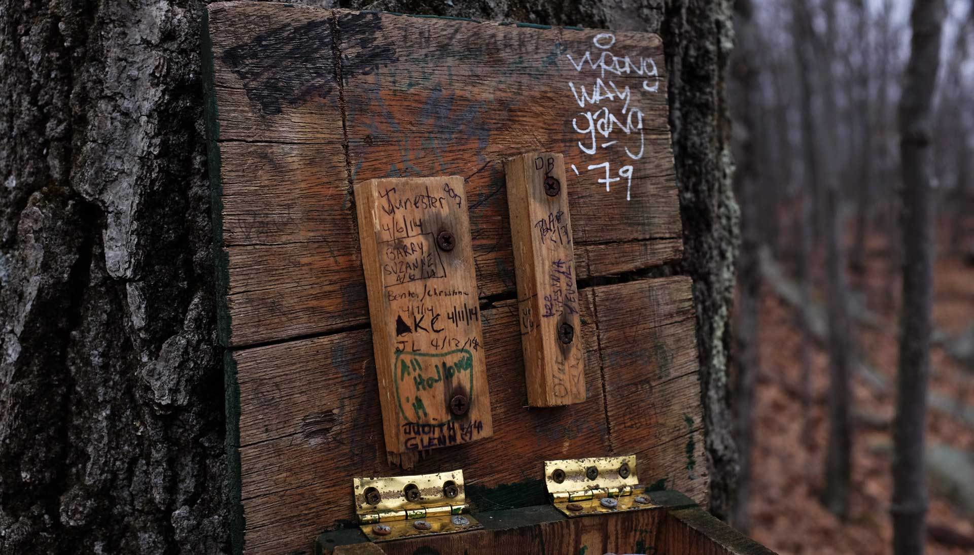"Photograph: close-up of an old wooden box attached to a large tree with grizzled bark. Brass hinges and rusty screws attach the lid, open, to the base; on the lid, graffiti has been scrawled in pen and marker: ""Junester, 4/6/14""; ""All Hallows""; ""Wrong Way Gang '79""."